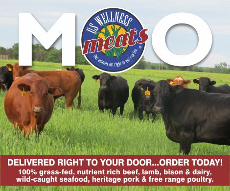 Online Health Food Store - US Wellness Grass Fed Beef Banner